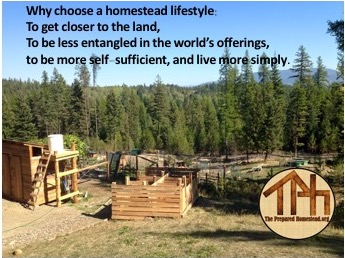 I'm Thinking About Homesteading, What Now? Part 1