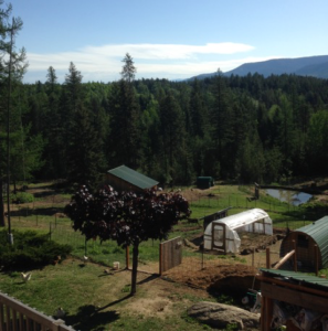 Self-Sufficient Homestead Property Design Consultant North Idaho