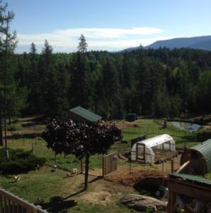 Self-Sufficient Homestead Property Design Consultant North Idaho