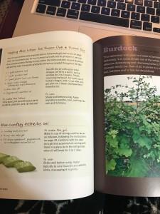 Medicinal Herbs Gladstar page